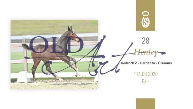 28 Henley DE187745320 HE-Fo Hardrock Z - Cardento_1  01:15