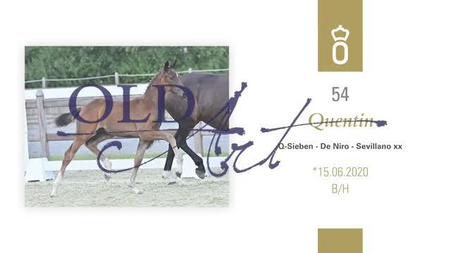 54 Quentin DE330004920 HE-Fo Q-Sieben - De Niro_1  00:55