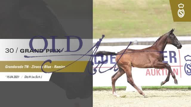 30 Grand Prix DE418180228721 FoE Grandorado TN - Zirocco Blue_1  00:48