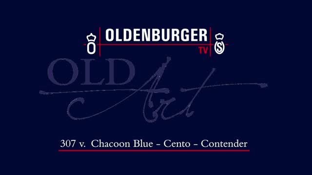 307 DE418180229721 FBR Chacoon Blue - Cento  01:03