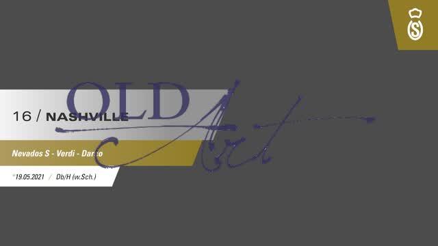 16 Nashville DE418180207221 OFoSep Nevados S - Verdi - Darco_  00:43
